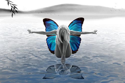 donna farfalla 1